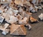 Pyramidenflocken Steinpilz